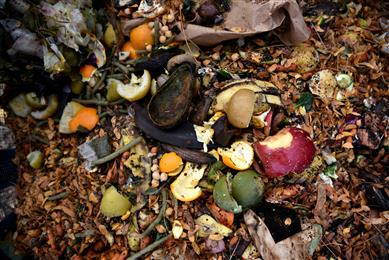 A new 'OK Compost' certified label material for thermal applications from Avery Dennison.