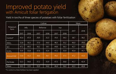 New Perstorp fertilizer solution shown to increase potato yield by up to 22 percent.